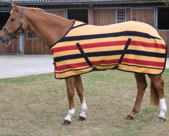 Equiros The International Equestrian Exhibition
