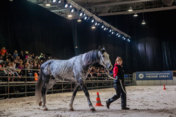 Equiros-2019 go off a smashing success