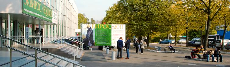 Выставка Эквирос - конная