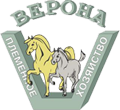Verona Equestrian Sports Club